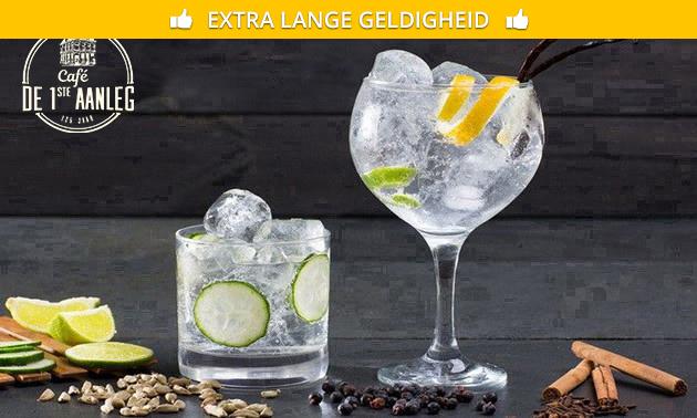 Gin-tonicproeverij + garnituren
