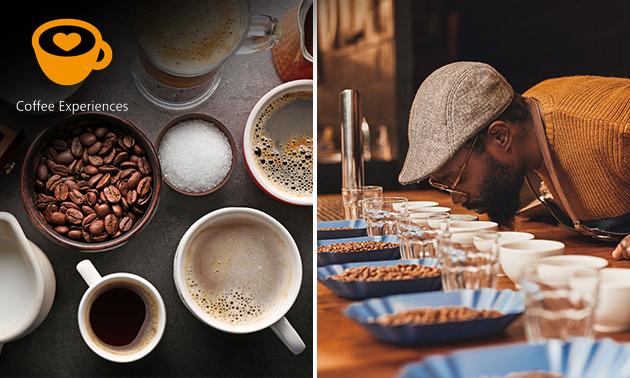 Koffie-experience (1,5 uur) + shoptegoed
