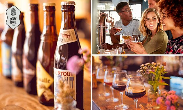 Craft Beer Tasting von 8 Bieren (2,5 Stunden)