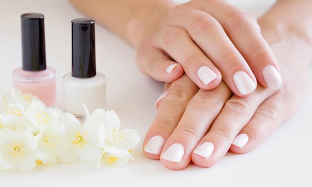 Gellak + mini-manicurebehandeling