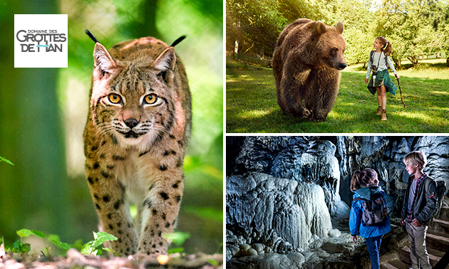 Entrée Parc Animalier du Domaine des Grottes de Han