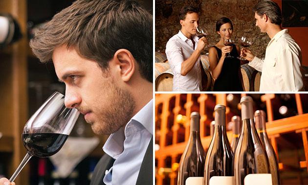 Wijn experience + bites bij High5 Wine Bistro