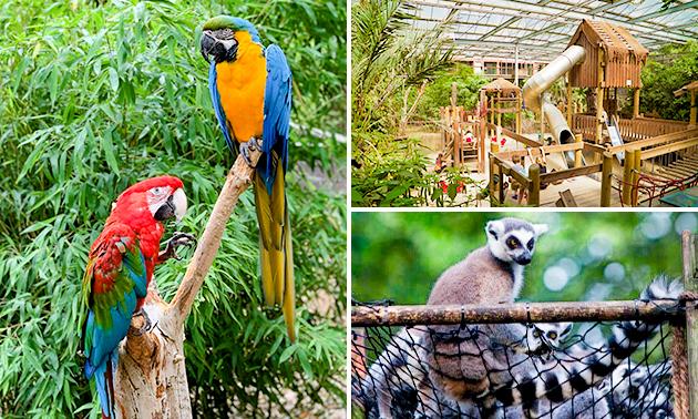 Entree voor Papegaaienpark Zoo Veldhoven