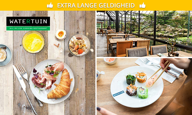 All-You-Can-Eat & Drink Lunch (3,5 uur) bij Watertuin