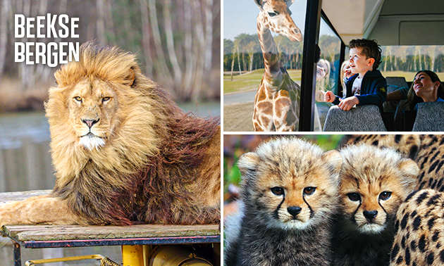 Eintritt Safaripark Beekse Bergen