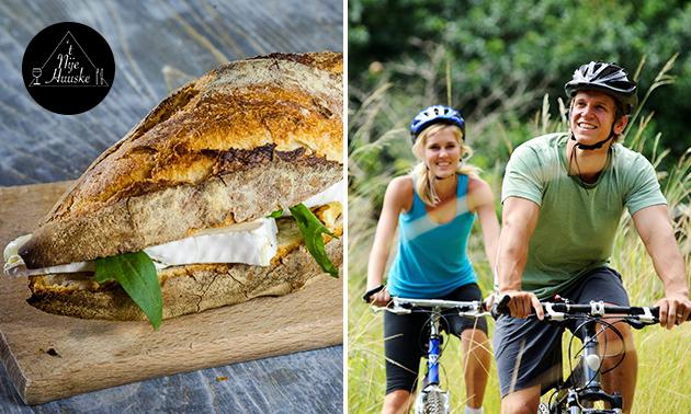 Wandel- of fietsarrangement + lunch to go op Ameland