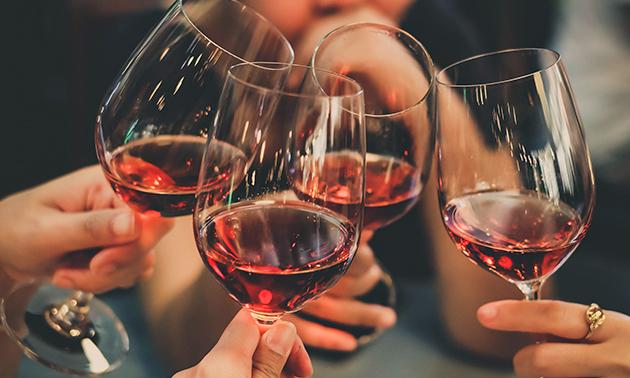Weinprobe für 6 Personen + 1 Flasche Wein