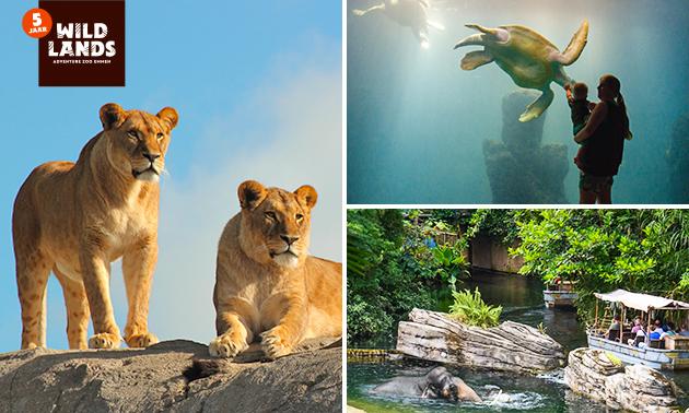 Tageseintritt für WILDLANDS Adventure Zoo Emmen
