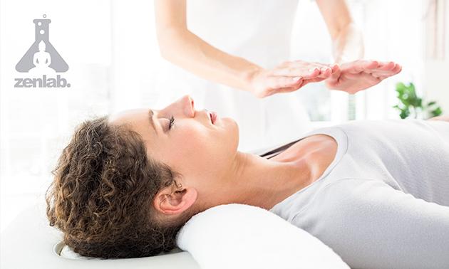 Reikibehandeling of workshop meditatie (2 uur)